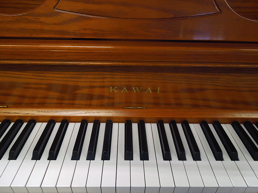 Piano, Theory, Voice and Other Instruments